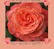 Peach rose With Hearts by Peri