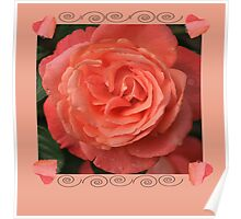 Peach rose With Hearts Poster