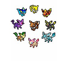 Pixel Eeveelutions Photographic Print