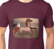 Iaconagraphy Equus: Red Rabicano Unisex T-Shirt