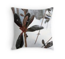 Winter Time Throw Pillow