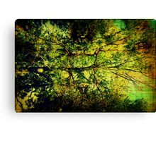Vitruvian Man Tree Canvas Print