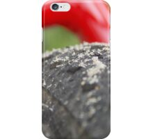 Sandy Tire iPhone Case/Skin