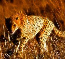 Sprinting Cheetah by Nicolas Raymond
