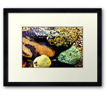 Rock Me 4 Framed Print