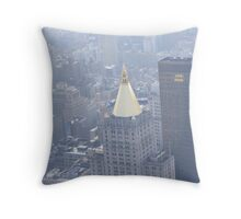 Golden Topper Throw Pillow