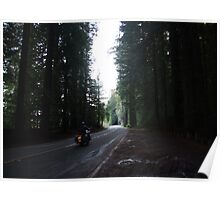 Passage through the Giants Poster
