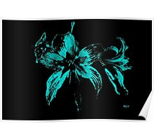 blue flower in a black background Poster