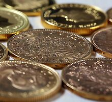 Old Gold Coins by Zosimus
