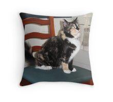Kitty Supervisor Throw Pillow