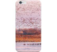 Migration Morning on The Platte iPhone Case/Skin