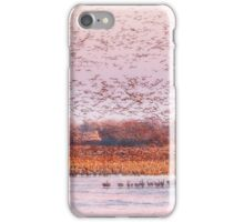 Migration Morning on The Platte iPhone Case/Skin