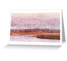 Migration Morning on The Platte Greeting Card
