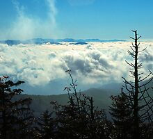 CLOUDS, CLINGMANS DOME by Chuck Wickham