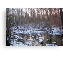 A Winter Park Canvas Print