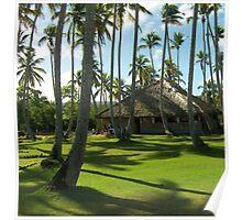 Coconut Plantation Poster