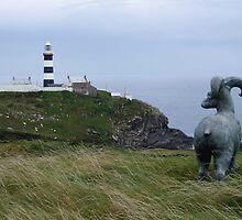 Lighthouse, Near Kinsale by John Douglas