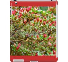 Tetragnathidae Web in Azalea - Cape Cod MA iPad Case/Skin