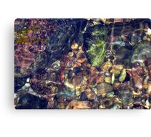 Natures puzzle Canvas Print