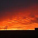 Dawning by GailD