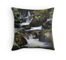 creek near 'The Beeches' walk Throw Pillow
