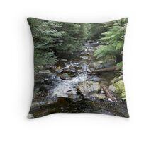 Phantom Falls Creek Throw Pillow