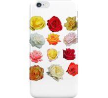Flower Sisters iPhone Case/Skin