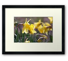 For the trumpet shall sound and the dead shall be raised incorruptible  Framed Print