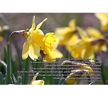 For the trumpet shall sound and the dead shall be raised incorruptible  Photographic Print