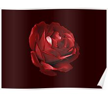Plastic, red rose Poster
