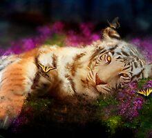 Tiger, Tiger by Aimee Stewart