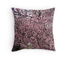 Cherry Blossum Time Throw Pillow
