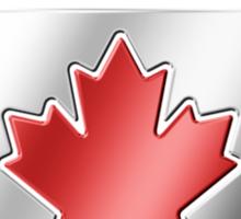 Team Canada - Canadian Flag & Text - Metallic Sticker