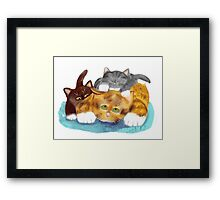 Momma Cat needs a Break Framed Print