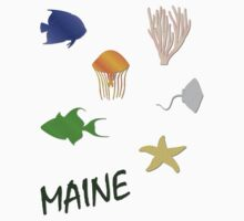Maine by Judith Hayes