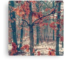 Trees losing their leaves Canvas Print