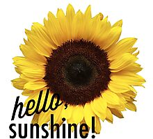Hello Sunshine Sunflower Photographic Print
