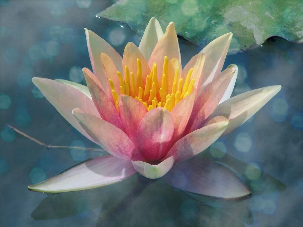 A Dream Within A Dream by Karen Casey-Smith