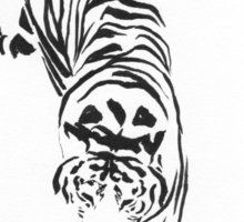 Tiger on the Prowl Sticker