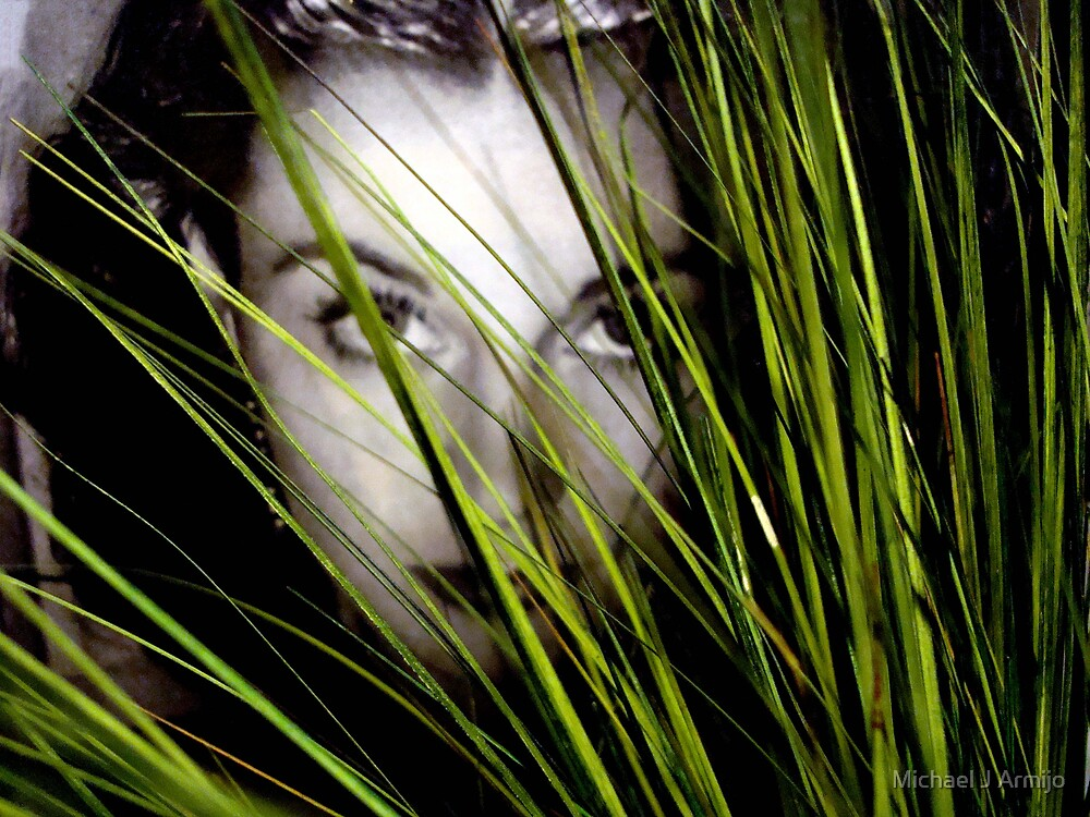 Splendor In The Grass by Michael J Armijo