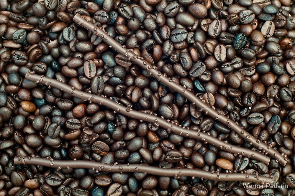 Sticks 'n Beans by Werner Padarin
