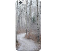 Winter Trail iPhone Case/Skin