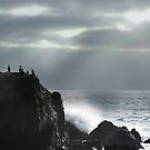 Cormorant Rock by Voytek Swiderski