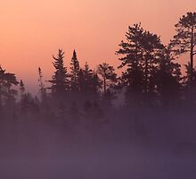 Another Michigan Dawn by Bill Spengler