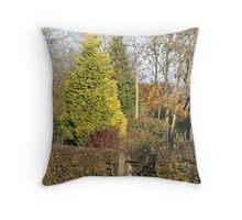 Cottage in Autumn Throw Pillow