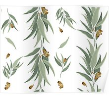 Floral pattern of eucalyptus leaves and seeds Poster