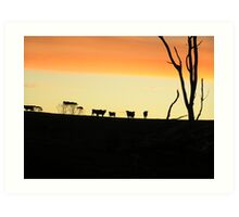 A mooving sunset Art Print
