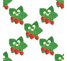 Seamless Pattern of Strawberries with Leaves and Flowers Photographic Print