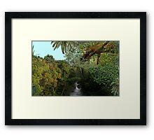1148-A Perfect Spot Framed Print