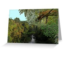 1148-A Perfect Spot Greeting Card
